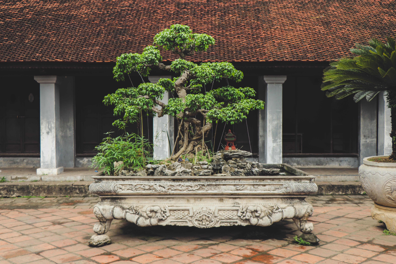 architectural-design-architecture-asian-architecture-2977433